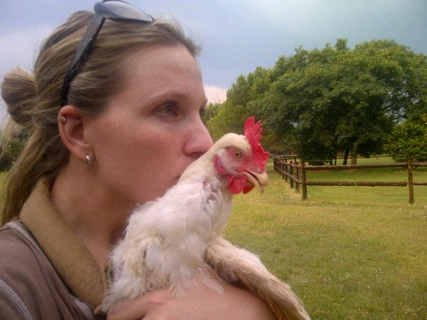 Fiona, Jacquimo and the rest of the fabulous flock! – A month of glorification of the chicken