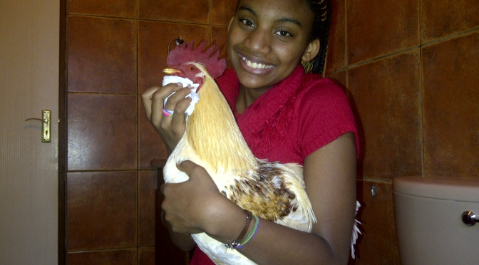 Trisha, Trisha's gorgeous kids and Artemis Rage – A month of glorification of the Chicken