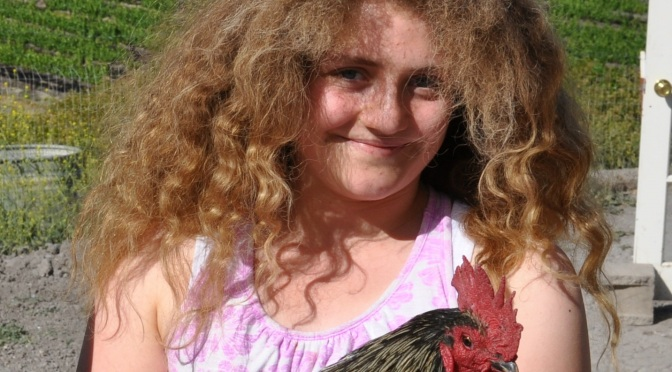 Zoe and her 85 chickens at Happy Hen Chicken Rescue – A month of glorification of the chicken