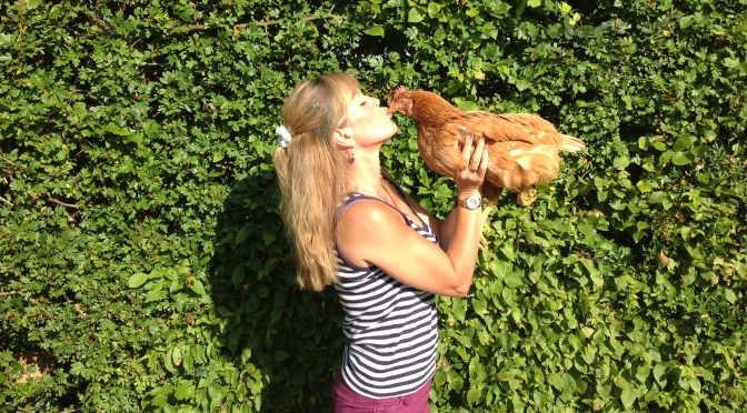 Mel, Olivia, Thelma, Sophie, Maddie Beak, Nora, Weeble, Bella, Tina, Tiffany, Toyah, Itsy Bitsy, Tiny Weeny, Teensy Weensy, Tiddly Widdly & Daisy the cat – A month of Glorification of the chicken