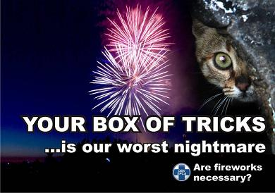 The second deadly sin committed while living unconciously – letting off fireworks or supporting firework displays, it's just not ok!