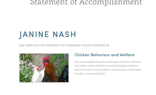 Janine completed course on Chicken Welfare and Behavior through University of Edinburgh